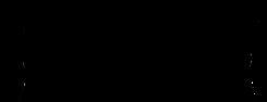 Gap Logo  Black - No Boarder (Transparen