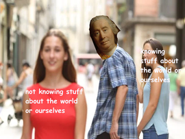 hume project.png