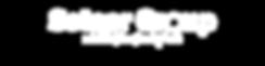 Setser Group Logo.png