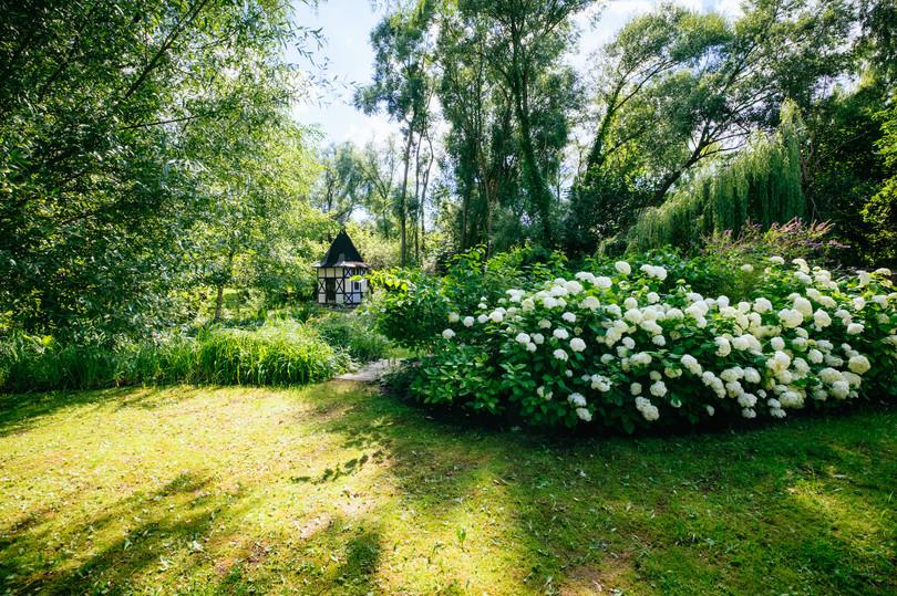 Taubenblau Garten_Sven Hagolani.jpeg