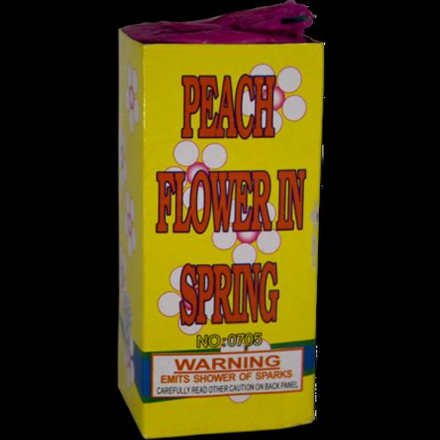 Peach Flower In The Spring pkg of 4