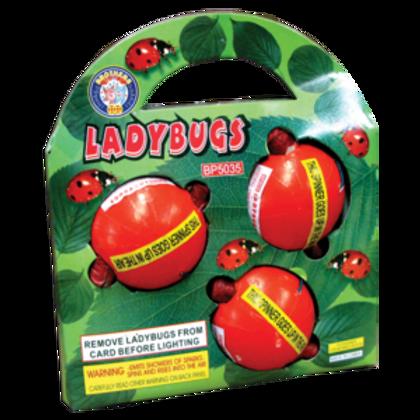Lady Bugs Pkg of 3