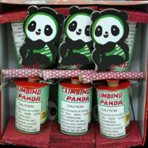 Climbing Panda Box of 6