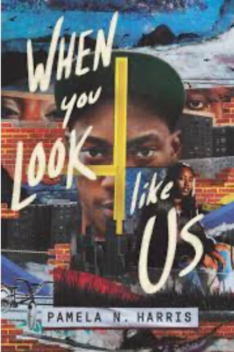 When You Look Like Us  Paperback