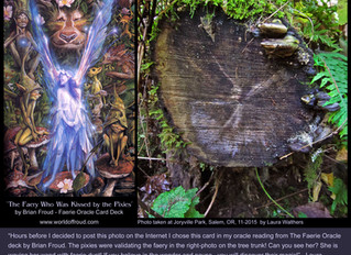The Faery Imprint in the Tree Trunk is Magical! Can You See Her?