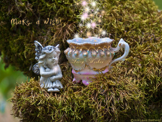 Believing is Seeing, Ask the Wish Faery!