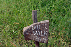 Walking Trail 2017