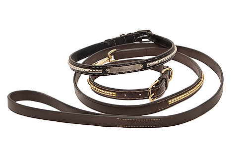 Leather Clincher Dog Collar &  Leash