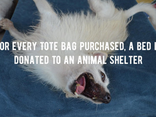 Sewing beds for sheltered animals