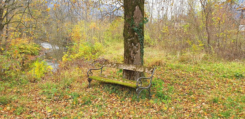 Herbst-Auszeit am Altausseer See - Entfernung zur Ferienwohnung Narzisse: 6 km