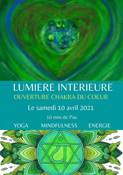 FLY LUMIERE INTERIEURE AVRIL PAU-1.png