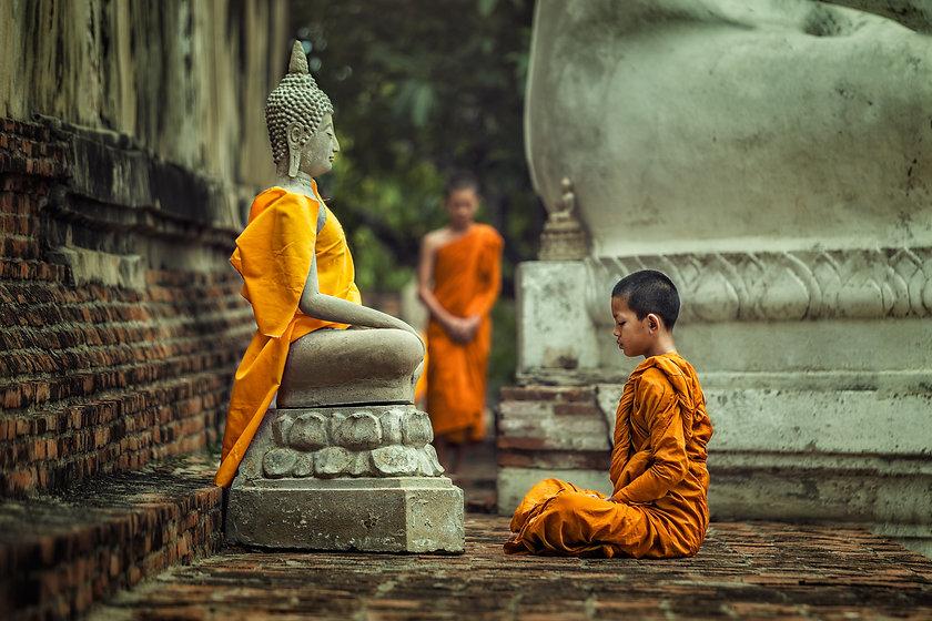 Novices monk vipassana meditation at fro