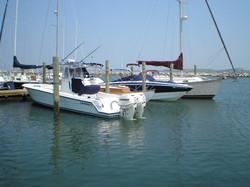 docks+2007-6.JPG