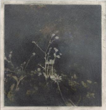 Série 'Ne crains plus la chaleur du soleil, ni les rages des vents furieux', 11.5x11.5cm, dessin sur image imprimée, 2019