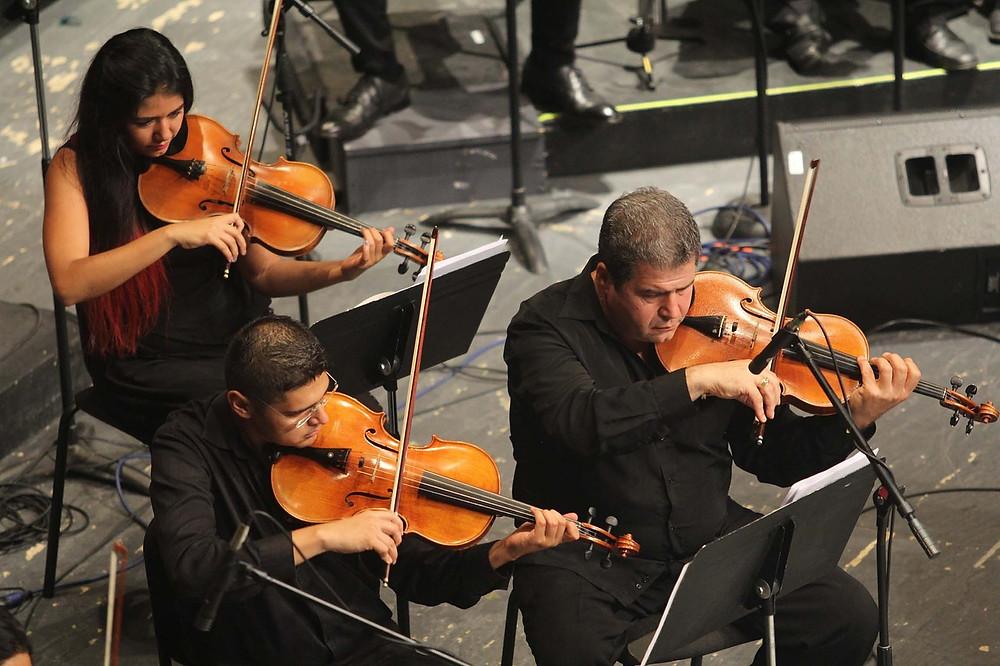 Orchestra, violins, violinists