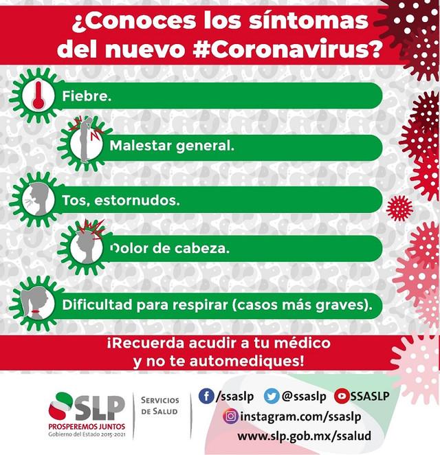 Sintomas Coronavirus.jpeg