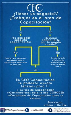 CEO Consultoría