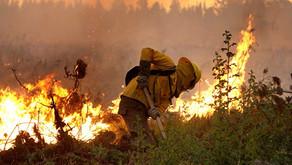 Incendios Forestales: comunicado IPAC