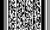 PDF417 barcode.png