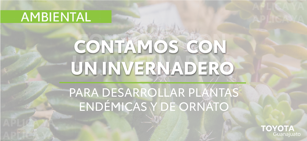 Banner ambiental-15.png
