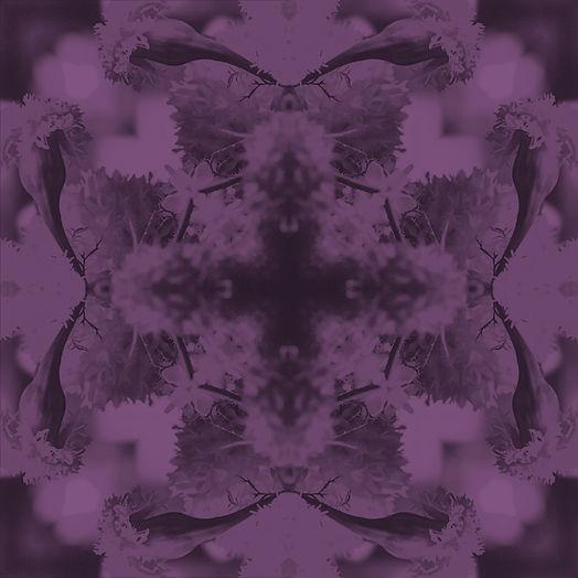 caleidoscopio1 copy 2.jpg