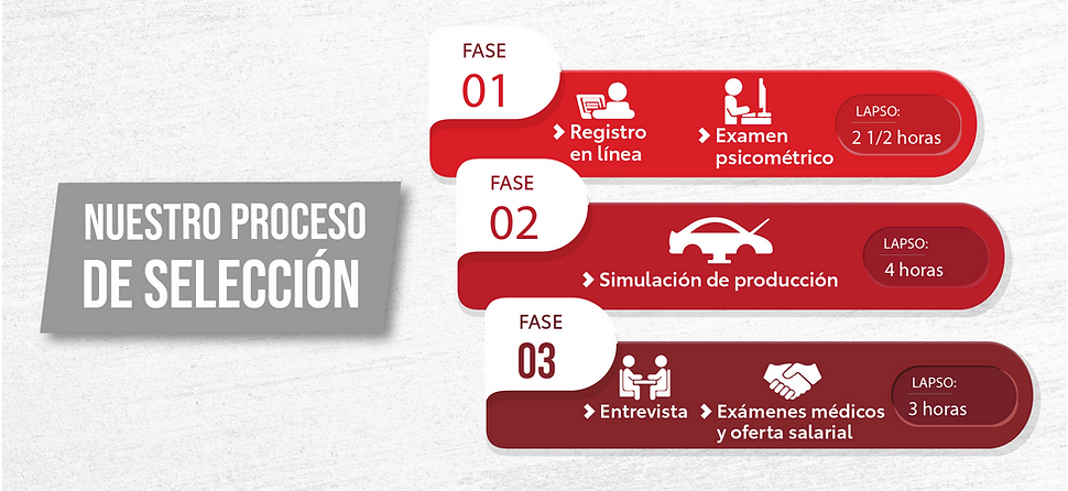 proceso_de_selección-13.png