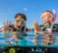 open-water-diver_0-3.jpg