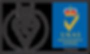 New BSI Logo.png