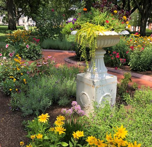 Garden, summer 2019