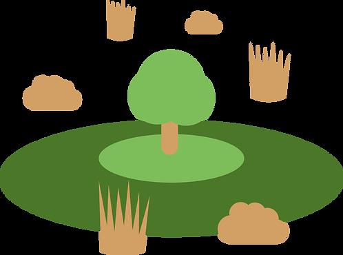 Mitten im Moor -  Natur-Patenschaft