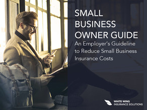 An Employer's Guideline to Reduce Small Business Insurance Costs