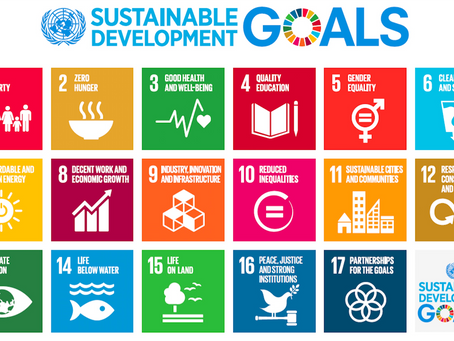 INTERVIEW:  Helping businesses understand Sustainability through the SDGs