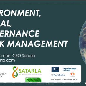 ESG and Risk Management
