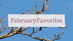 February Favorites | Sunburn in Seattle