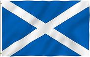 Scottish flag waving.jpg