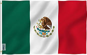 Mexican flag.jpg