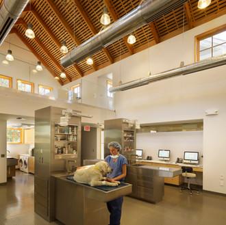 Oldwick Animal Hospital