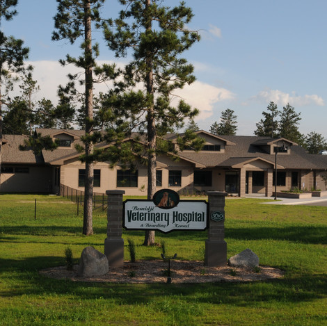 Bemidji Veterinary Hospital