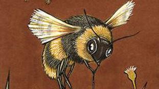 Anita Inverarity - bee.jpg