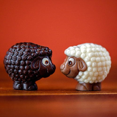 Chocolate sheep!