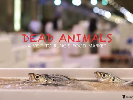 Dead Animals : une visite au marché de Rungis