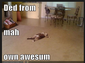 Meme: dead from my own awesome