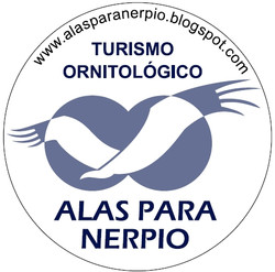 Alas para Nerpio