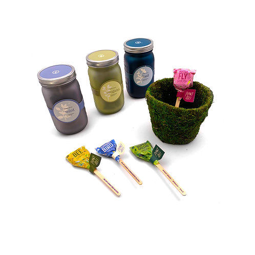 Modern Sprout Gift Set