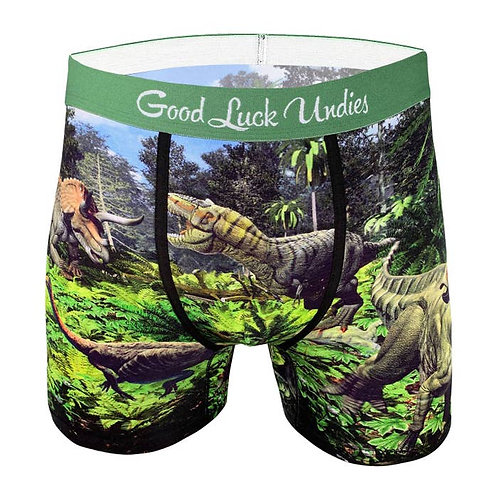 Men's Dinosaur Valley Underwear