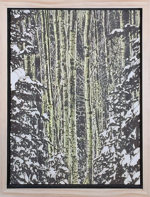 Alder Trees in snow covered firs.  Watercolored.  12x16