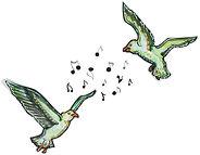 Hörspielvögel V2.jpg