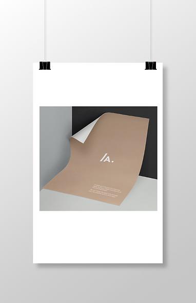 Flyer/Brochure