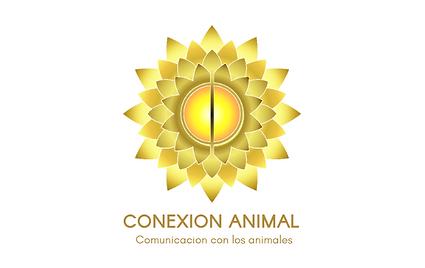 FORMATO NOTICIAS CPA (37).png
