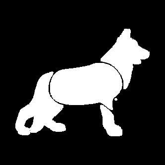 Canine Seizure Alert Logo Mark by Huck Yeah Studio